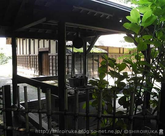 旧小池邸_井戸.jpg